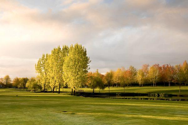 Golf für Singles und Alleinreisende im Allgäu