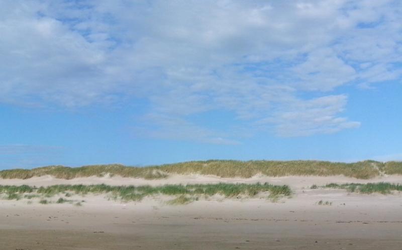 Deutsche Singles reisen gerne an die Nordsee